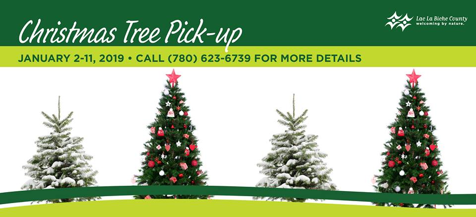 Christmas In La.Christmas Tree Recycling Returns To Lac La Biche County My